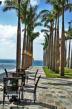 三亚红树林度假酒店预订 三亚自助游